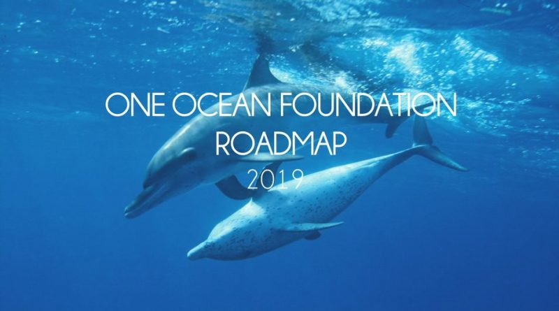 2018: the black year for the oceans.