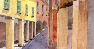 Svicolando a Bologna